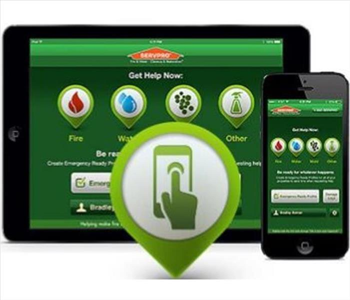 ERP green digital app on phone