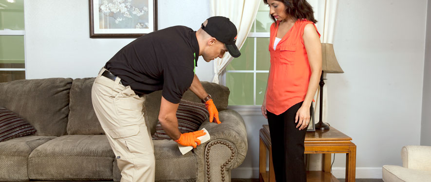 Arlington, FL carpet upholstery cleaning